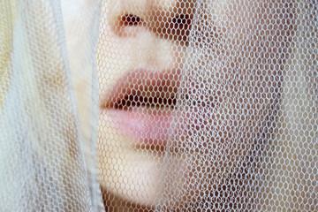 sensual lips behind a veil