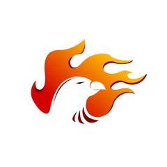 spirit fire bird