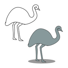 Ostrich on white background, vector