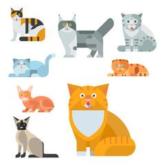 Cats vector illustration cute animal funny decorative kitty characters feline domestic kitten trendy pet drawn