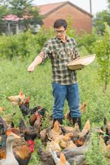 Young male farmer feeding chickens