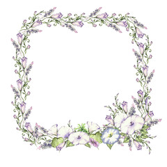 background with watercolor drawing wild flowers, round floral frame, wreath with painted field plants, herbal border,botanical illustration in vintage style
