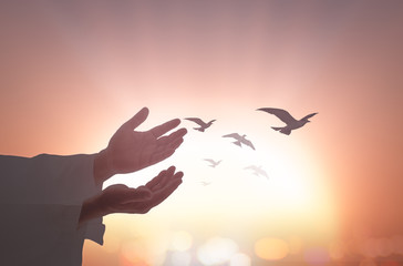 International migrants day concept: Silhouette islam man open two empty hands with palms up and birds flying over autumn sunset background.