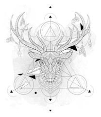 Patterned head of the deer  with geometry