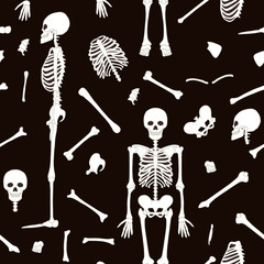 Seamless pattern, background with dancing skeletons in black and white colors. Stock line vector illustration.