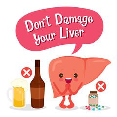 Liver, Human Internal Organ, Cartoon Character
