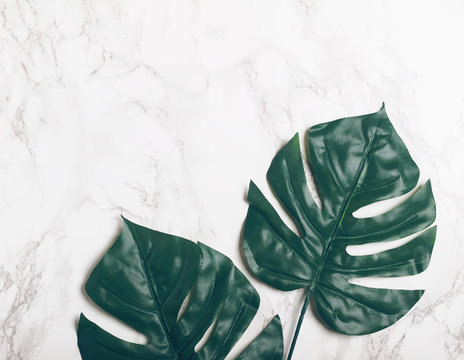 Big green tropical leaves on white marble background. Flat lay. Top view. Copy space.
