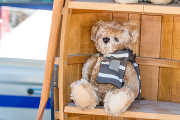 beautiful teddy bear with winter scarf displayed for child charity