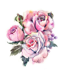 Watercolor rose illustration. Beautiful flowers on a white background. Bridal bouquet. Gentle summer roses.