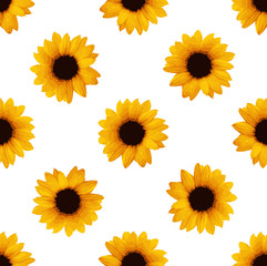Sunflowers seamless pattern. Flower pattern. Vector stock.