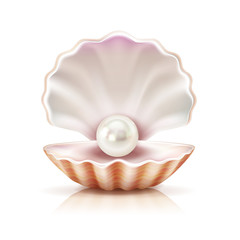 Shell Pearl Realistic Isolated Image