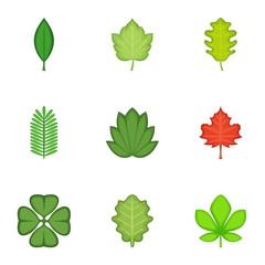 Leaves icons set, cartoon style