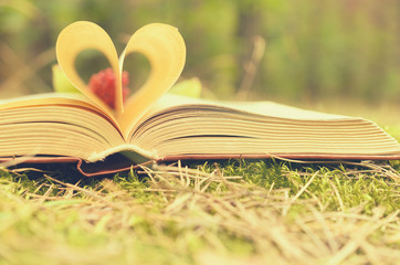 The pages of the opened book are stacked in the form of a heart.