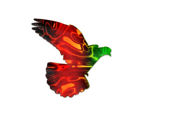 Afghan flag colors on the silhouette of the pigeon