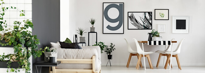 Modern minimalist flat