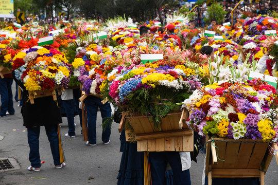 Medellin Colombia agosto 2015 Feria de las Flores desfile de silleteros