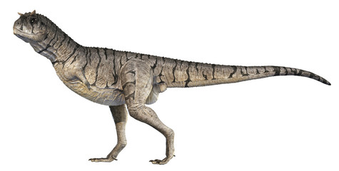 A 3D rendering of Carnotaurus sastrei standing tall, isolated on a white background.