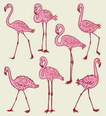 A flock of the pink cartoon flamingos