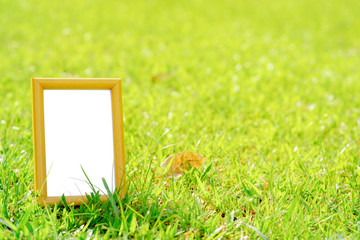 Empty wooden photo frame in a green grass field, Clipping Path Included.