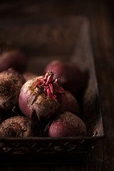 Purple Heirloom Beetroot in Rustic Setting