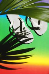 Summer image of flip-flops and palmleaf