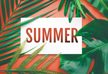 Summer text with tropical leaves in pastel color background.For promotion ads design