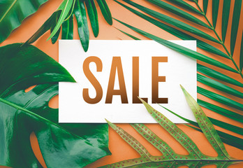 Sale text with tropical leaves in pastel color background.For promotion ads design