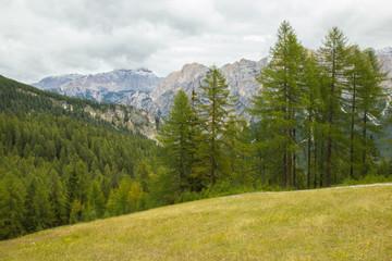 Printed roller blinds Khaki View od Dolomites alps in summertime