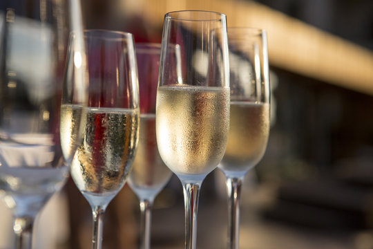 A lot of wine glasses with a cool delicious champagne or white wine at the bar. Alcohol background. lot of glasses with champagne during on the party table.