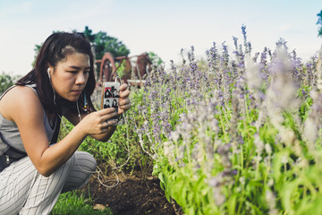 Woman take picture of flower in the garden.