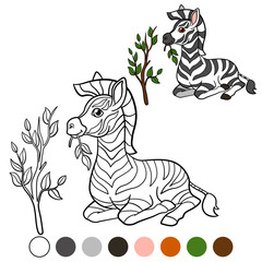Color me: zebra. Little cute zebra eats.