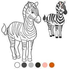 Color me: zebra. Cute beautiful zebra smiles.