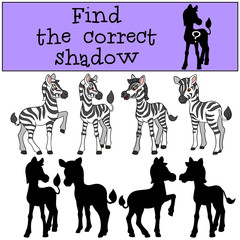 Educational game: Find the correct shadow. Little cute zebra.