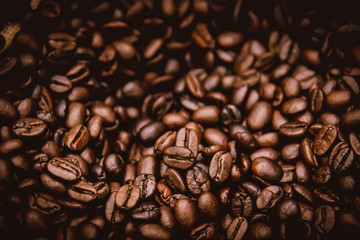 arabica brown rosted coffee beans