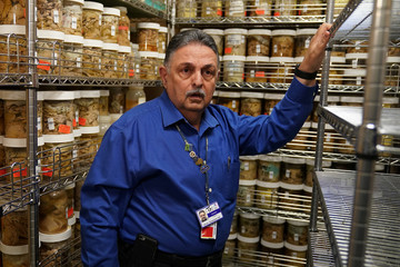 Dr. Vahram Haroutunian poses for a Picture in a brain bank in the Bronx borough of New York City, New York