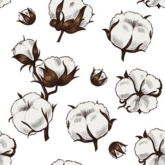Cotton plant . Vector seamless pattern. Vintage style
