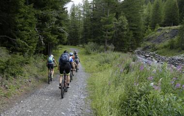 Gita in Mountain bike