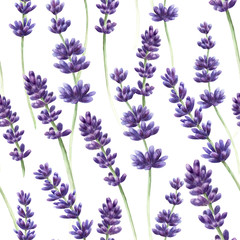 Watercolor hand drawn lavender seamless pattern background