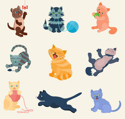 Cats vector set collection different cats kitty kitten play in defferent pose character illustration