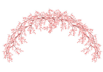 floral arch made of blooming sakura branches - spring season vector design