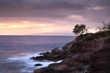 Suset at the sea rocky coastline with a dry trees and smooth motion blurred water surface