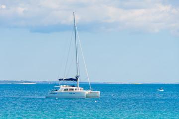Luxury sailing catamaran in open sea