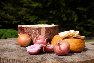 Traditional shepard food in eastern Europe with onions and cheese
