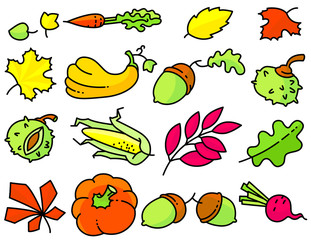 Autumn set with bright leaves. Fall season collection with vegetables.
