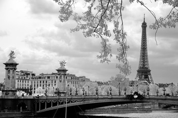 The Eiffel Tower and Alexandre III bridge in Paris, France.