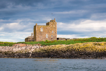 Inner Farne St Cuthbert's Chapel / Surrounded by seabird colonies on Inner Farne is the old St Cuthbert's Chapel