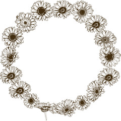 Circle floral frame of detailed hand drawn daisies flowers. Vector illustration.