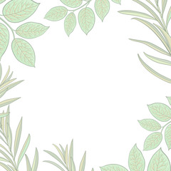 Square banner, frame of tree twigs, branches with fresh green leaves and round place for text, sketch vector illustration isolated on white background.