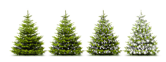 Silberne Weihnachtsbäume