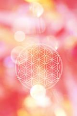 Blume des Lebens in energievollem magenta-rotem Lichterfeld